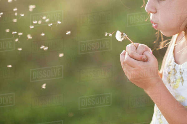 Midsection of girl blowing dandelion seed while standing on grassy field Royalty-free stock photo