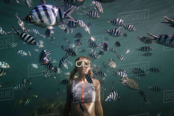 Woman swimming by fish underwater Royalty-free stock photo