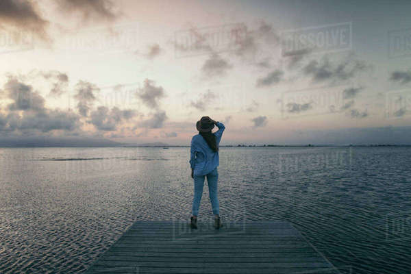 Rear view of woman standing on pier over sea against sky during sunset Royalty-free stock photo