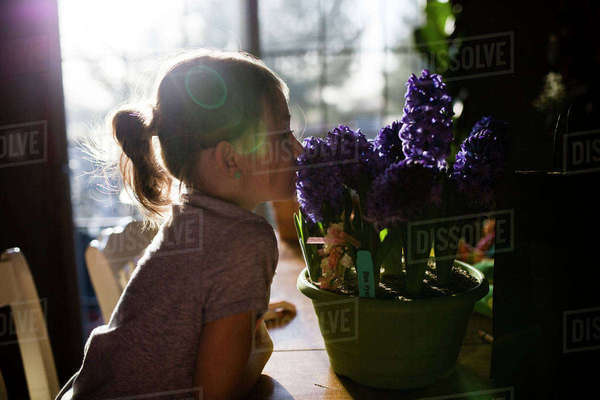 Side view of girl smelling flowers on table at home Royalty-free stock photo
