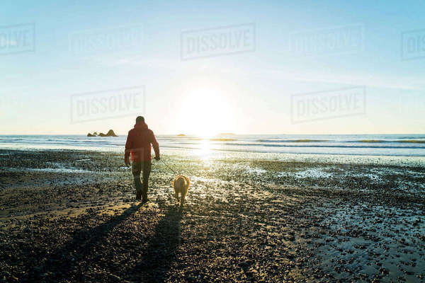 Rear view of hiker with Golden Retriever walking at Ruby beach against sky Royalty-free stock photo