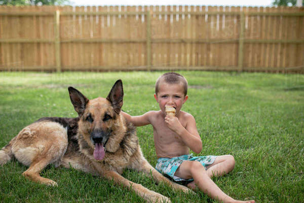 Portrait of boy eating ice cream while standing by German Shepherd in yard Royalty-free stock photo