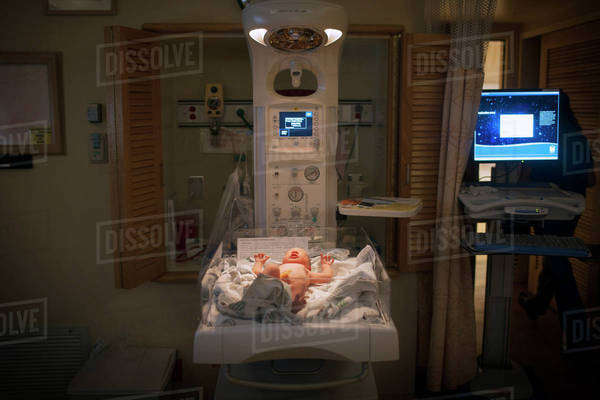 Premature baby in incubator at hospital Royalty-free stock photo