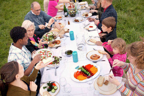 Large family with kids (6-11 months, 18-23 months, 2-3, 4-5, 6-7, 8-9) sharing dinner in field Royalty-free stock photo