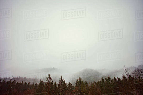 Scenic view of trees and mountains against cloudy sky Royalty-free stock photo