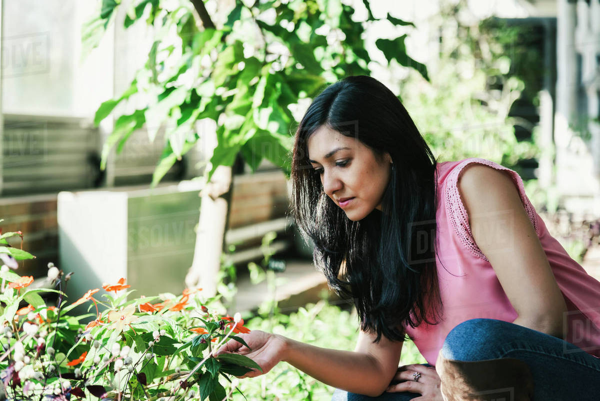 Beautiful agronomical engineer observing the plants in the greenhouse Royalty-free stock photo