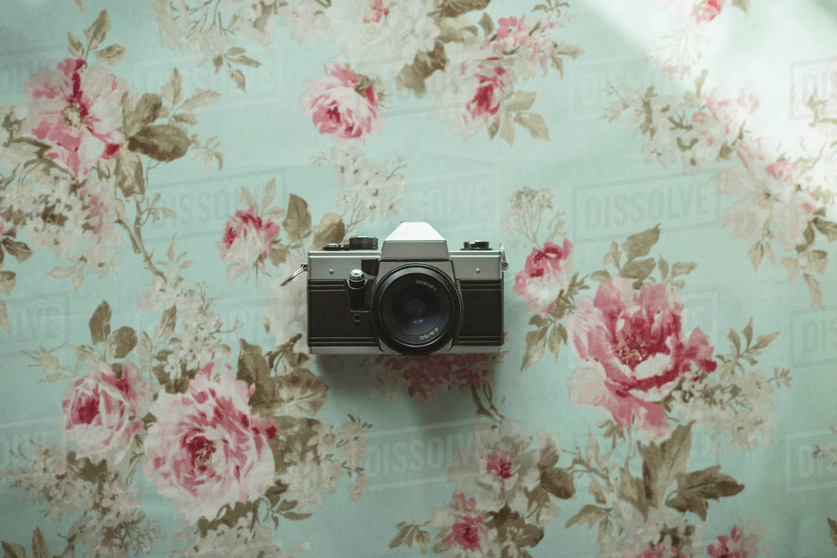 Old camera on a flowered background Royalty-free stock photo
