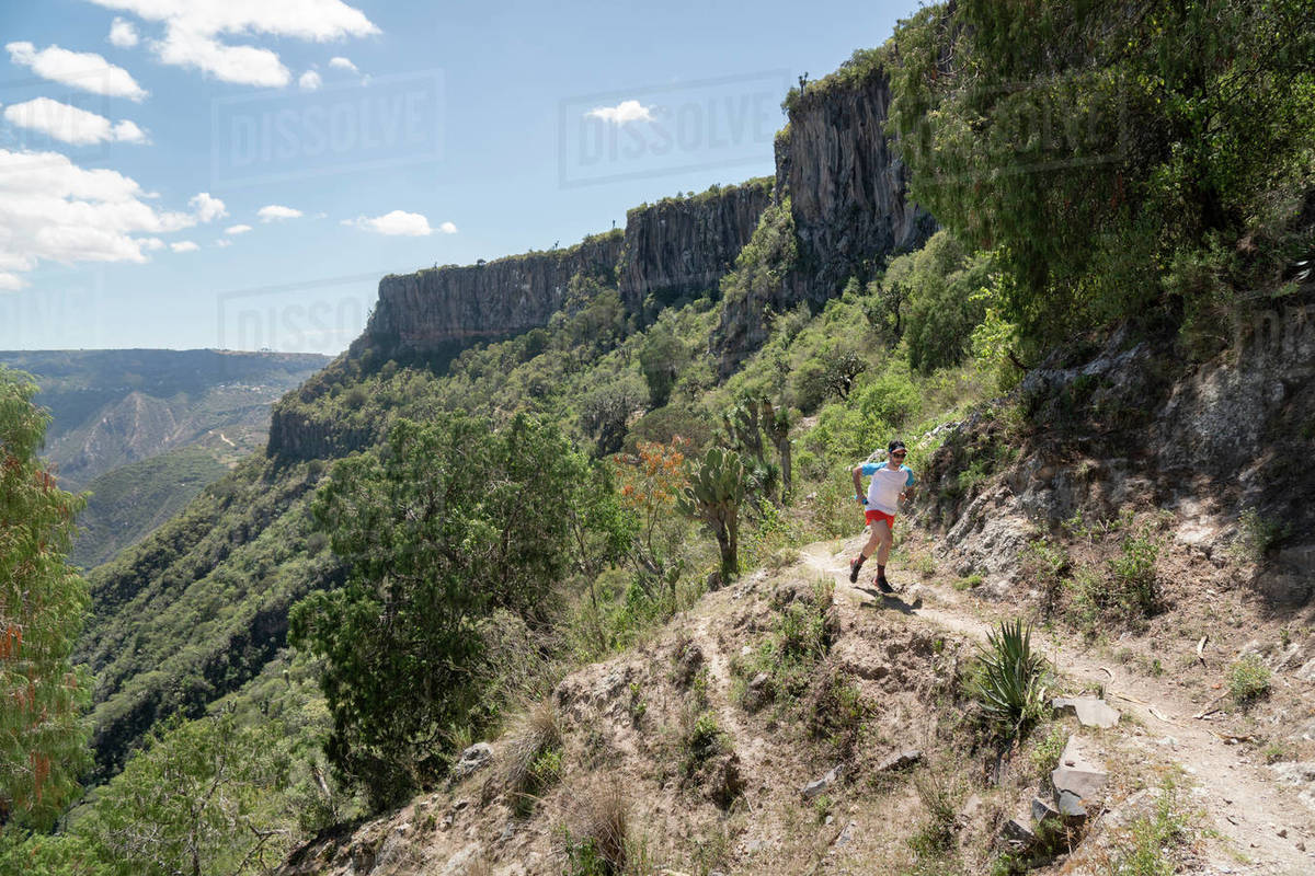 One man running on a trail at a canyon in Barranca de Meztitlan Royalty-free stock photo