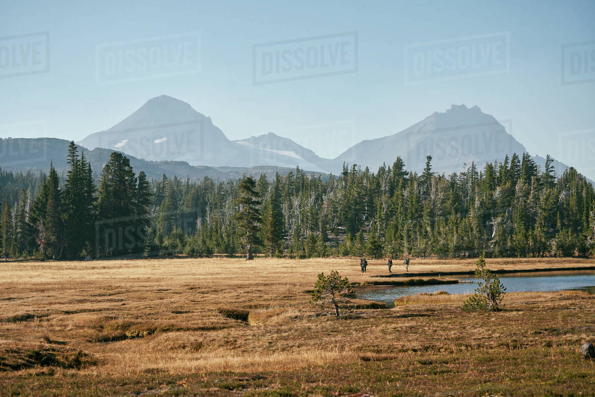 Distant group walking through meadow near lake and mountains Royalty-free stock photo