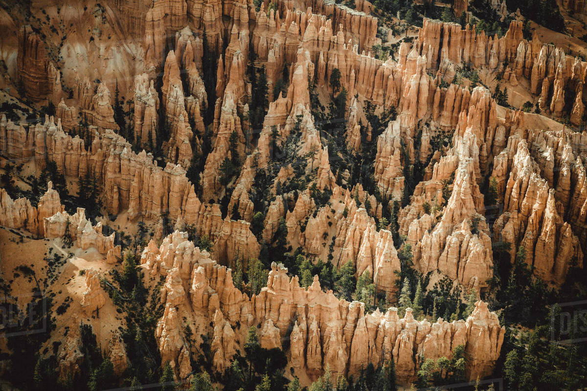 Detail of Bryce Canyon from bryce point Royalty-free stock photo
