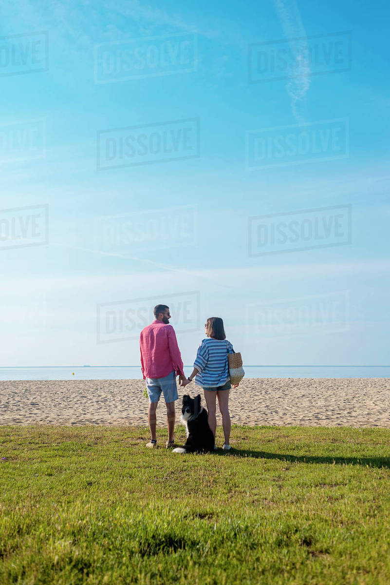 Back view of couple standing and holding hands near their dog on beach Royalty-free stock photo
