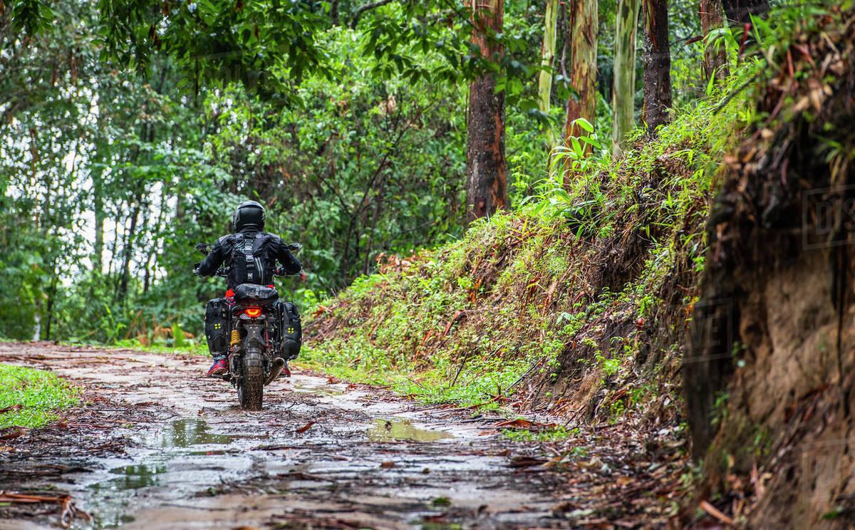 Man riding his scrambler type motorcycle through forrest Royalty-free stock photo