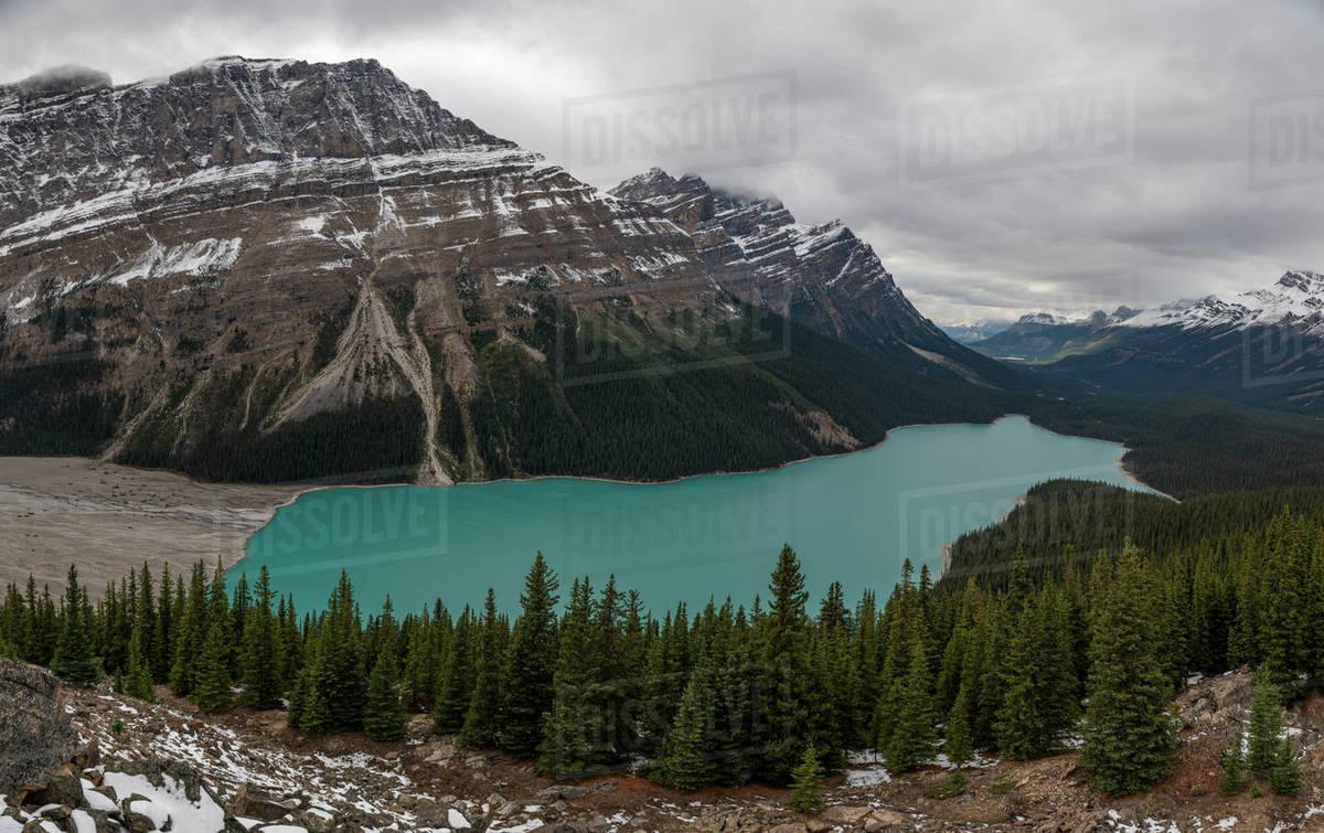 Peyto Lake in Banff National Park, Canada. Royalty-free stock photo
