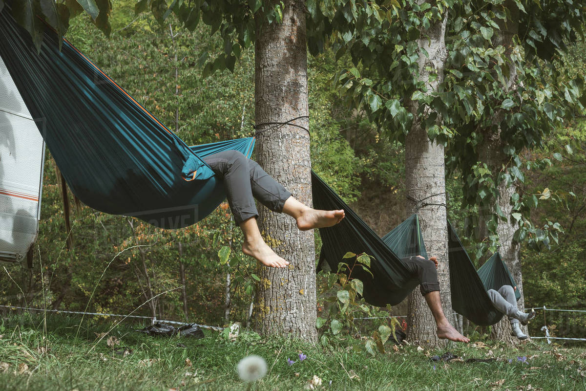 Friends relaxing in hammocks tied to the trees of a campsite on a sunny day. Royalty-free stock photo
