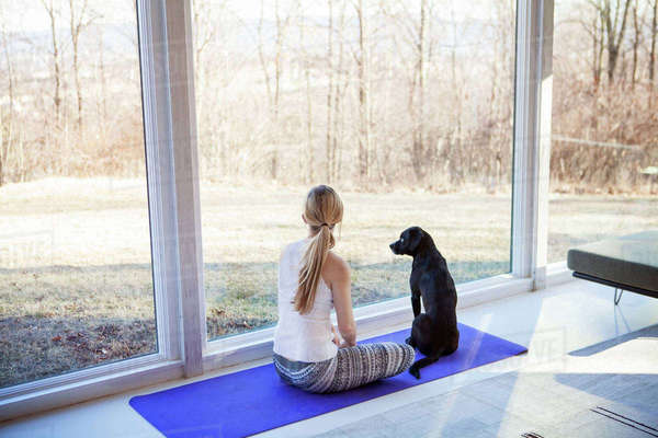 Rear view of woman sitting with dog on exercise mat at home Royalty-free stock photo