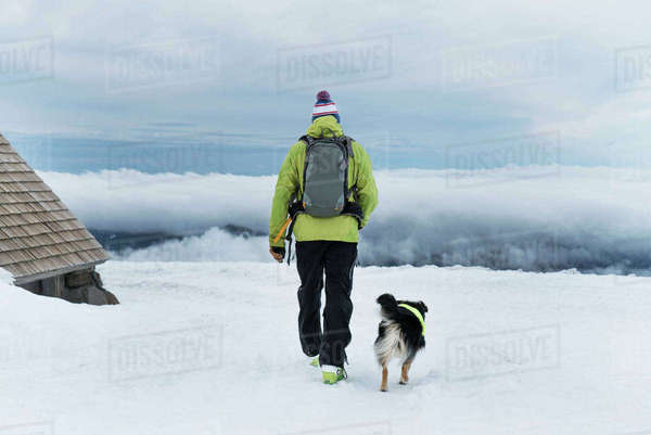 Rear view of man walking with dog on snow covered field Royalty-free stock photo