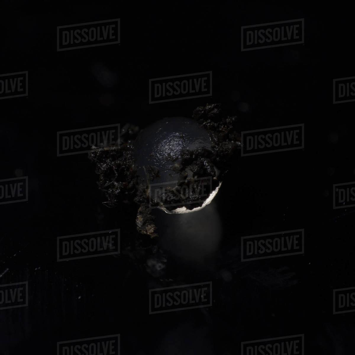 Extreme macro, a snail egg, white luxury caviar on black background Royalty-free stock photo