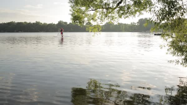 Mid distance shot of father and son paddleboarding on lake Royalty-free stock video