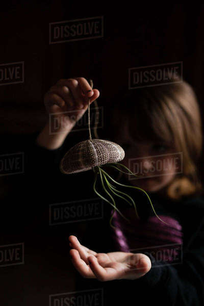 Girl playing with air plant hanging from sea urchin in darkroom Royalty-free stock photo
