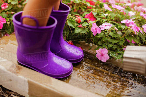 Low section of girl wearing purple rubber boots while standing by impatiens blooming in yard Royalty-free stock photo