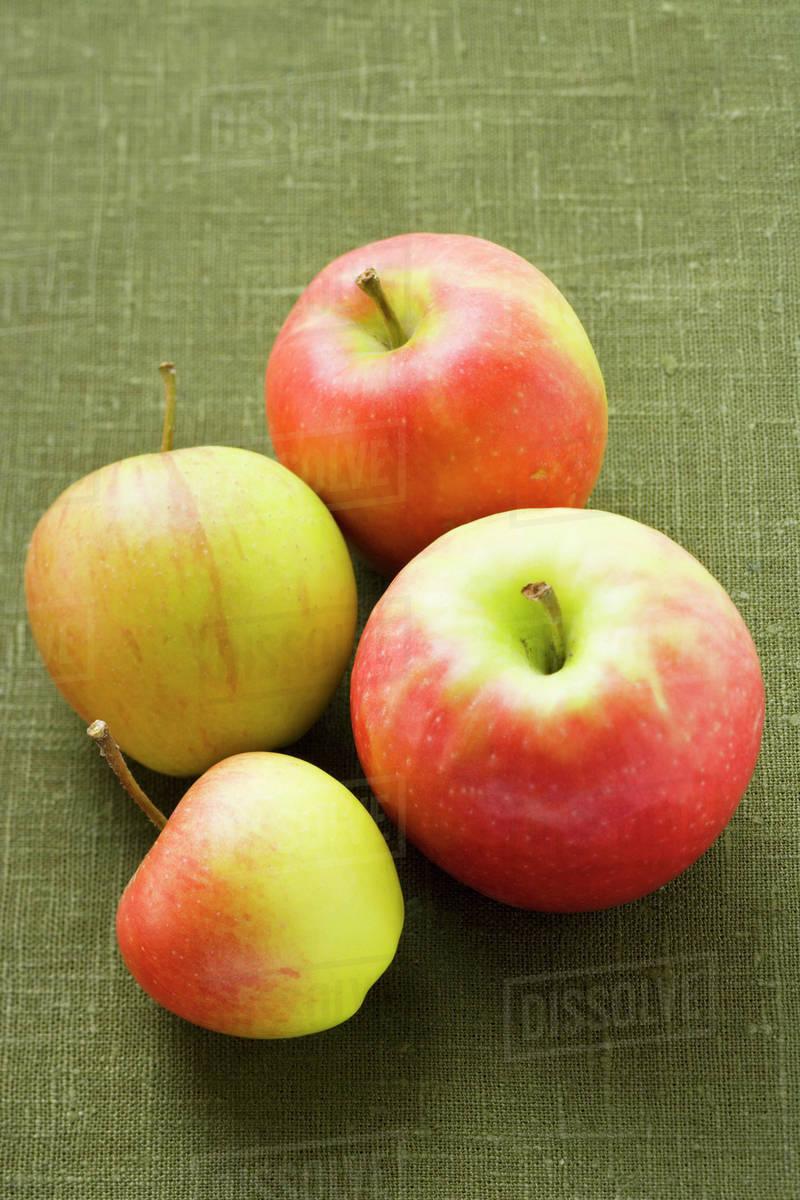 four apples stock photo dissolve