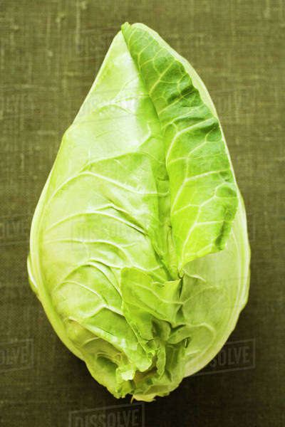 Pointed cabbage on green background Royalty-free stock photo