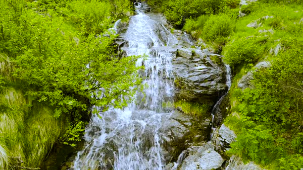 Small river in dense green grass in Swiss Alps, Switzerland Royalty-free stock video