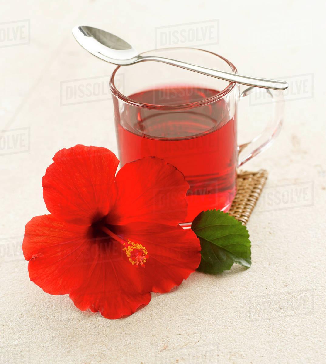 Hibiscus Flower Tea And Hibiscus Blossom Stock Photo