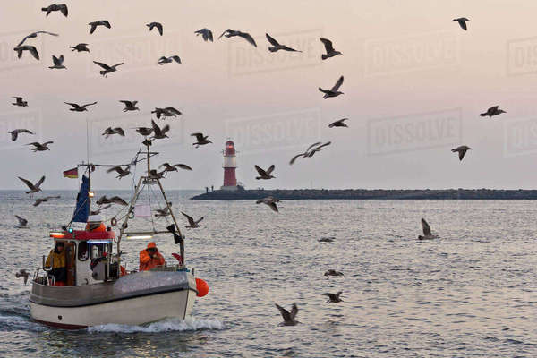 Germany, Mecklenburg-Western Pomerania, Warnemuende, Fishing boat, Lighthouse in the background Rights-managed stock photo
