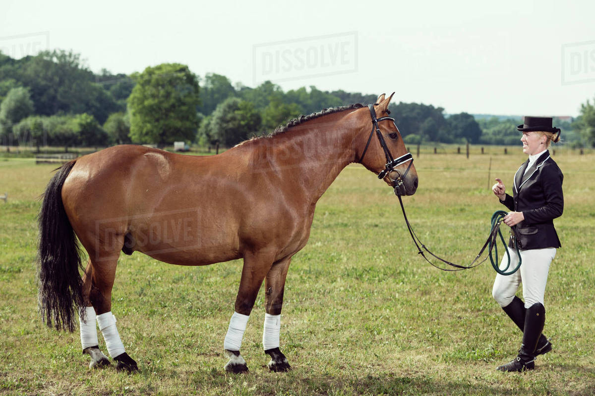 Woman Wearing Riding Gear Face To Face With Horse On A Meadow Stock Photo Dissolve