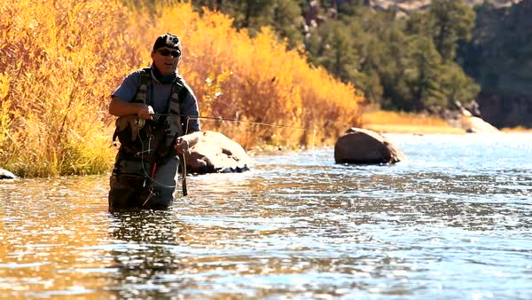 Man in river casting fly rod upstream on the Green River Royalty-free stock video