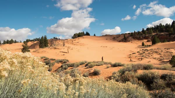 TIme lapse at red sand dunes in the Utah desert at Coral Pink Sand Dunes. Royalty-free stock video