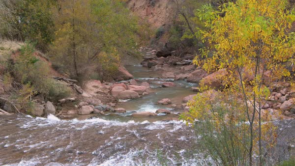View down river of water flowing through rocks and trees during Fall in Zion. Royalty-free stock video