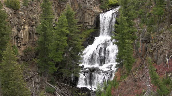 Undine Falls flowing through forest in Yellowstone Royalty-free stock video