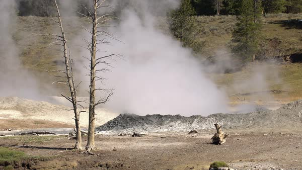 Steaming hot pots in Yellowstone National Park Royalty-free stock video