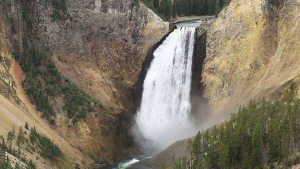 Wide view of Yellowstone Falls flowing from a lookout point. Royalty-free stock video
