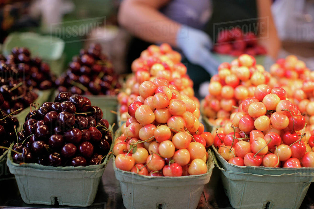 Photograph of fresh cherries at fruit stand with focus on foreground,  Vancouver, British Columbia, Canada stock photo