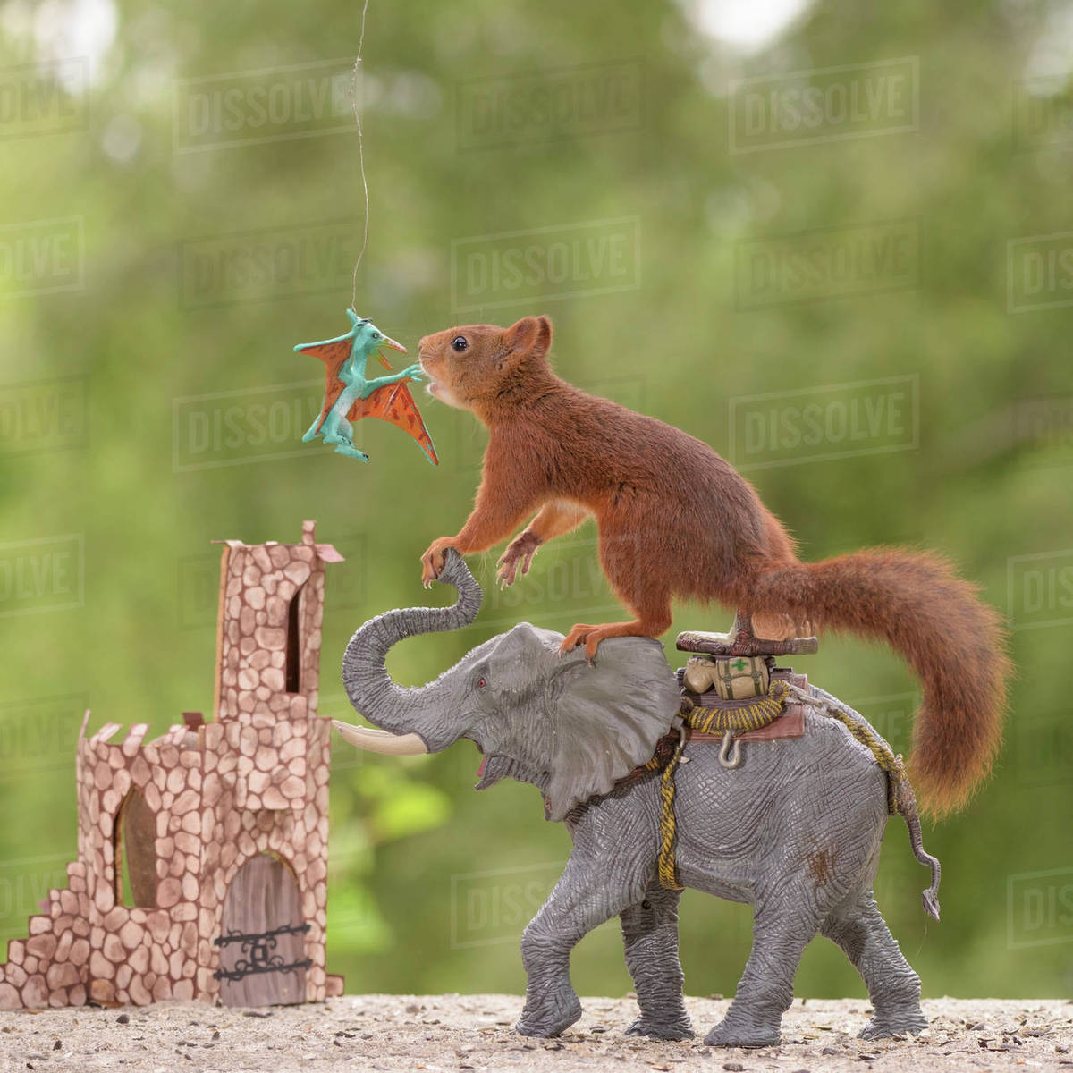 cute scene with red squirrel riding toy elephant and