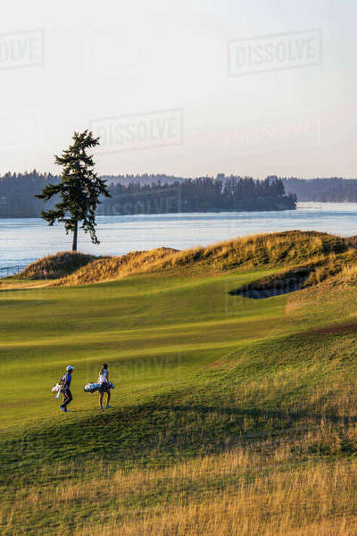 Golfers at Chambers Bay golf course, site of the 2015 US Open, near Tacoma, WA on a sunny evening. Royalty-free stock photo
