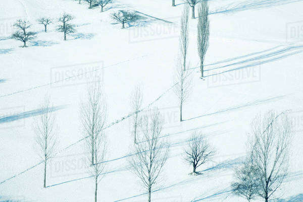 Snow-covered landscape with bare trees, high angle view Royalty-free stock photo