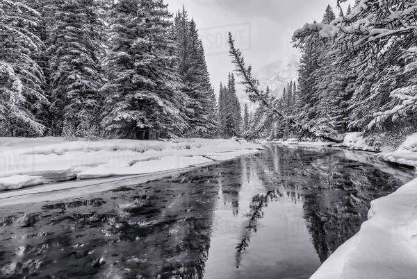 Creek slowly freezing over during a snowy winter in black and white Royalty-free stock photo