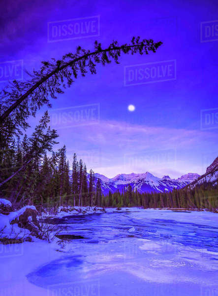 Winter scene of forest and lake at dusk in Bow River Banff, Alberta, Canada. Royalty-free stock photo