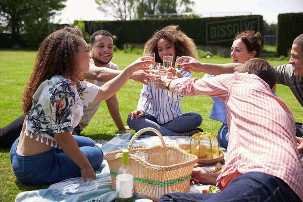 Young adult friends having a picnic make a toast Royalty-free stock photo