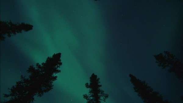 The aurora borealis Rights-managed stock video
