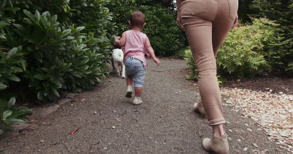 Mom and toddler walking in yard with bulldog Royalty-free stock video