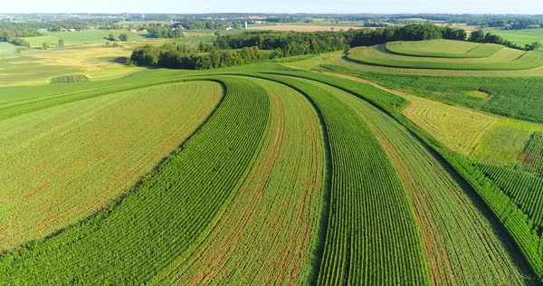 Stunning striped green fields over rolling hills, rural Wisconsin in Summertime, aerial view. Royalty-free stock video