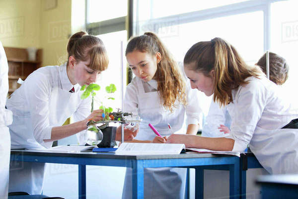 High school students conducting scientific experiment in biology class Royalty-free stock photo