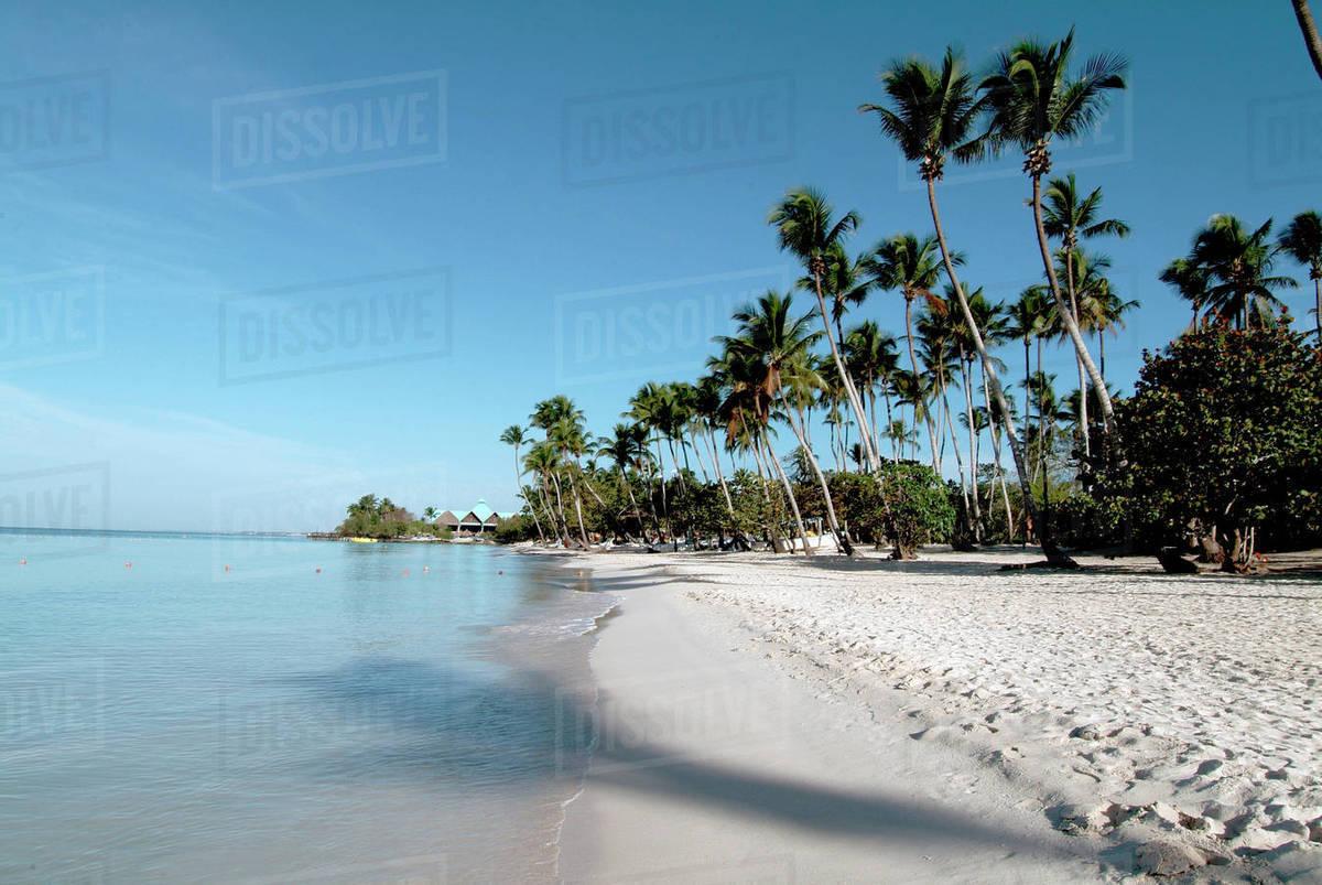 Beach At Bayahibe Dominican Republic