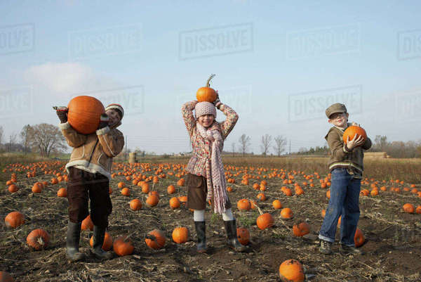 Boys and girl in pumpkin patch Royalty-free stock photo