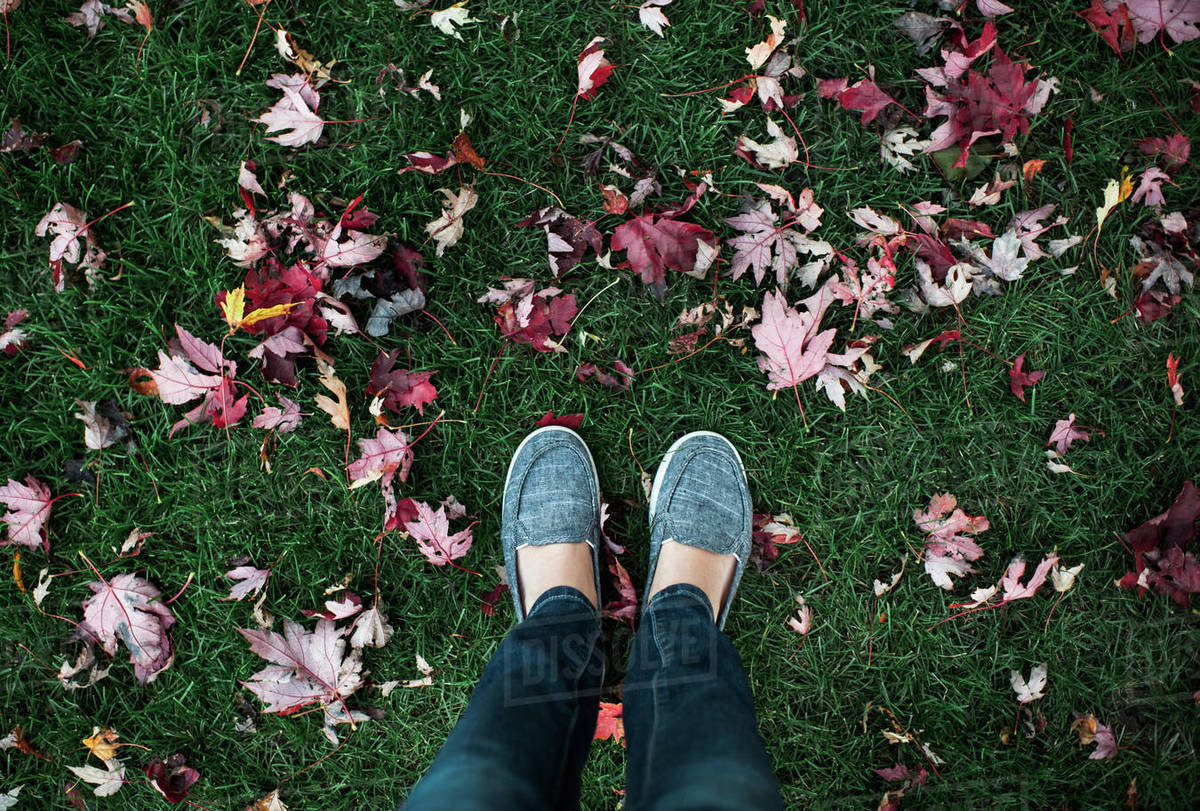 View of woman's feet standing in grass with fallen autumn leaves Royalty-free stock photo